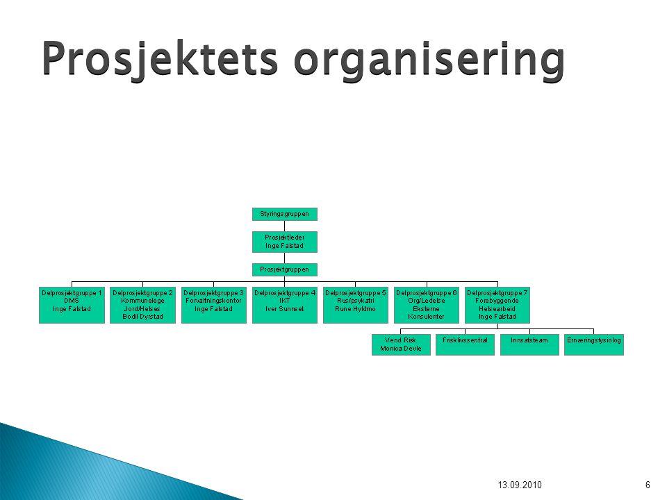 6 Prosjektets organisering