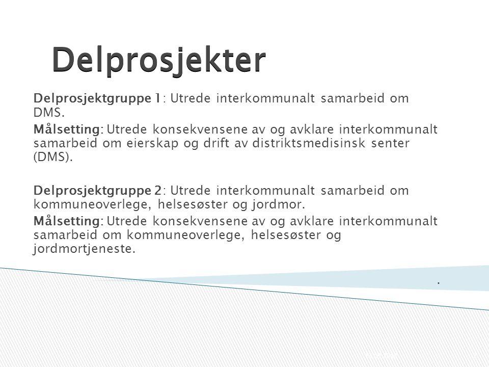 Delprosjekter Delprosjektgruppe 1: Utrede interkommunalt samarbeid om DMS. Målsetting: Utrede konsekvensene av og avklare interkommunalt samarbeid om
