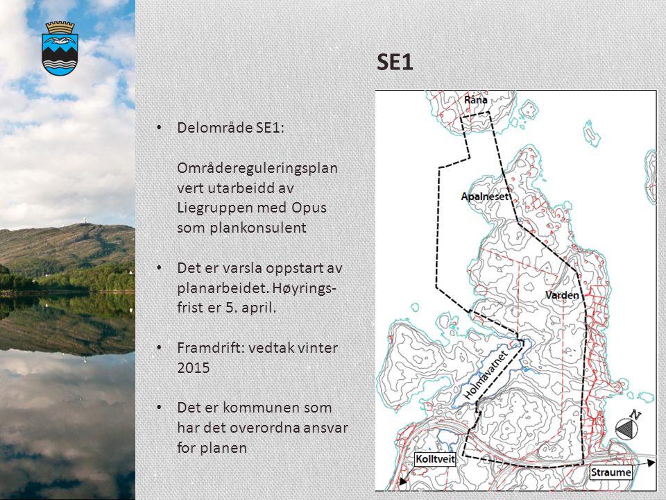 SE1 Delområde SE1: Områdereguleringsplan vert utarbeidd av Liegruppen med Opus som plankonsulent Det er varsla oppstart av planarbeidet. Høyrings- fri