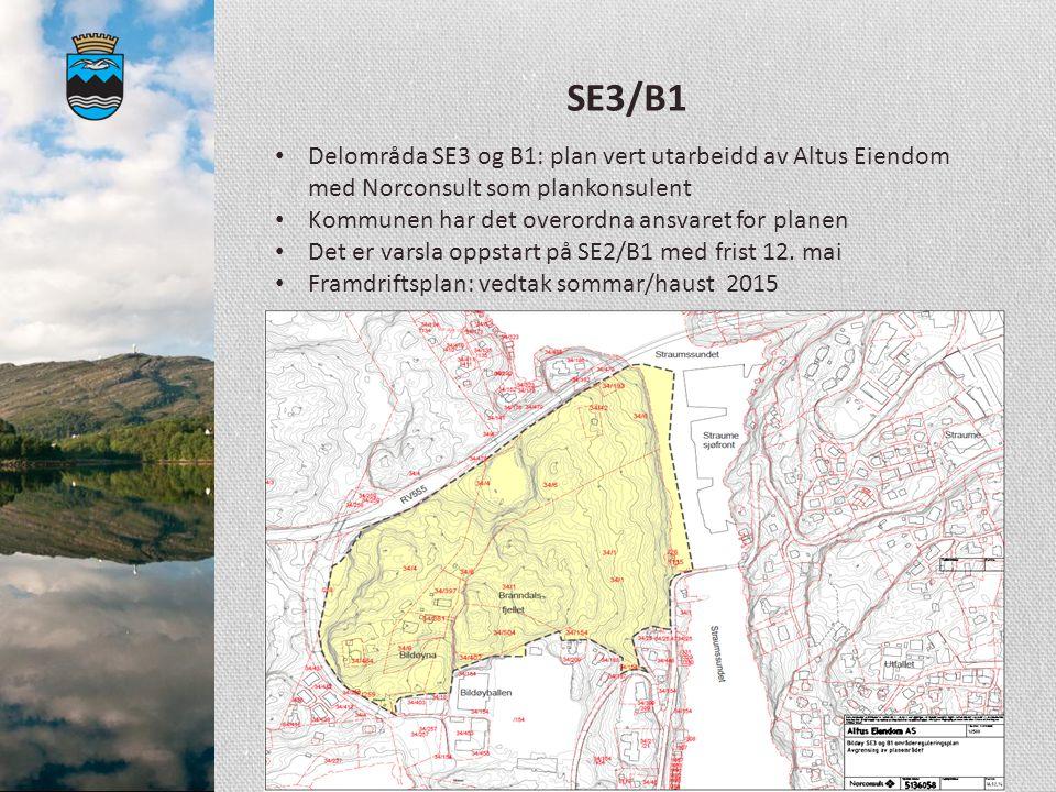 SE3/B1 Delområda SE3 og B1: plan vert utarbeidd av Altus Eiendom med Norconsult som plankonsulent Kommunen har det overordna ansvaret for planen Det e