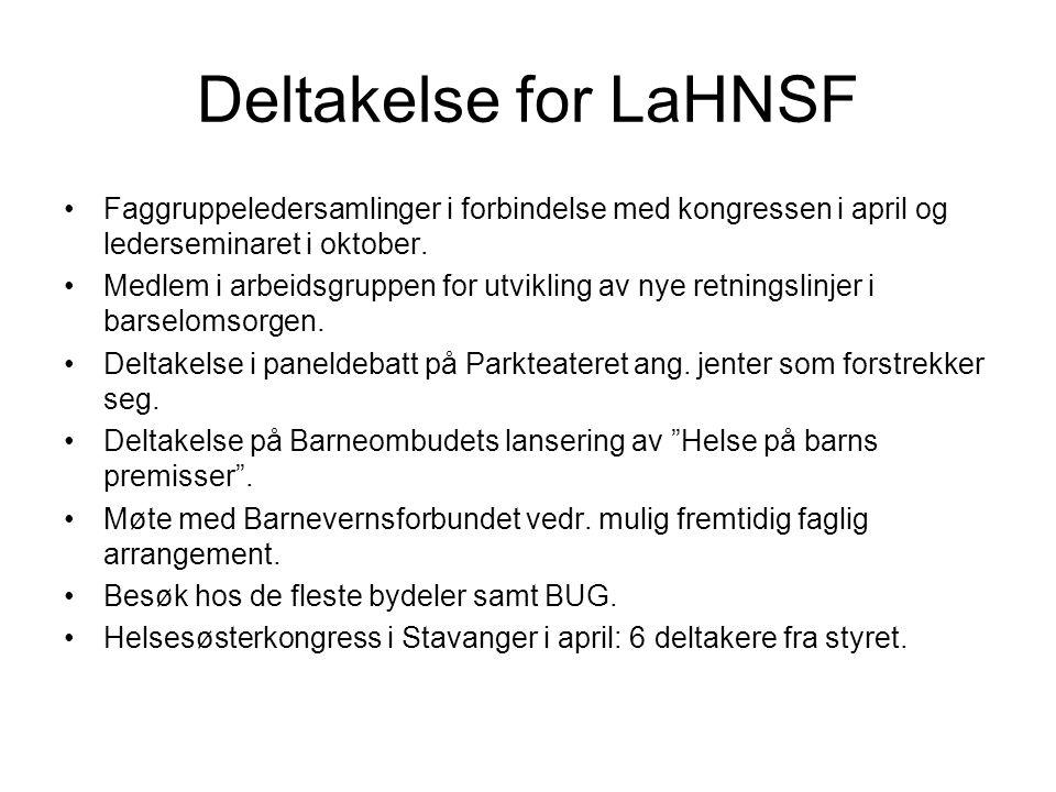 Deltakelse for LaHNSF Faggruppeledersamlinger i forbindelse med kongressen i april og lederseminaret i oktober.