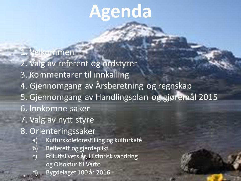 Styreleder takker styret for super innsats til glede for samholdet på Halvøya.