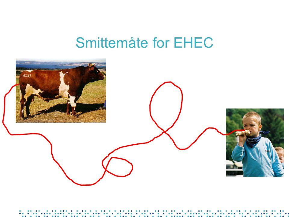 Mulige smittemåter for EHEC Gjødsel Fingre og gjenstander Bekker og innsjøer Drikkevann Melk (upasteurisert) Badevann Grønnsaker Kjøttråvarer Overflaten på dyret Frukt Juice Kjøttprodukter
