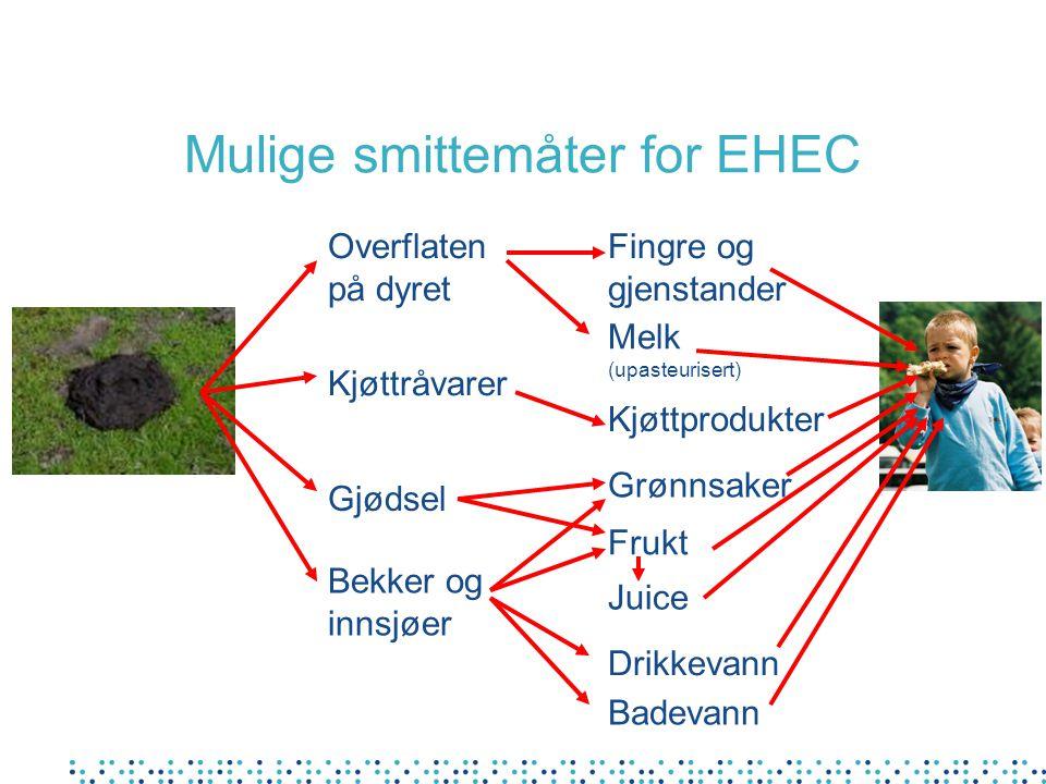 Mulige smittemåter for EHEC Gjødsel Fingre og gjenstander Bekker og innsjøer Drikkevann Melk (upasteurisert) Badevann Grønnsaker Kjøttråvarer Overflat