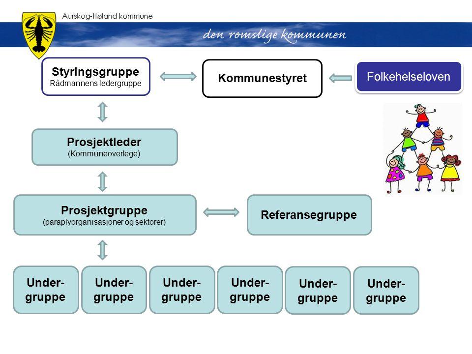 Styringsgruppe Rådmannens ledergruppe Prosjektleder (Kommuneoverlege) Referansegruppe Prosjektgruppe (paraplyorganisasjoner og sektorer) Under- gruppe