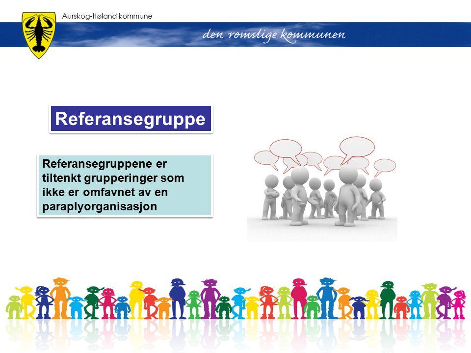 Referansegruppene er tiltenkt grupperinger som ikke er omfavnet av en paraplyorganisasjon Referansegruppe