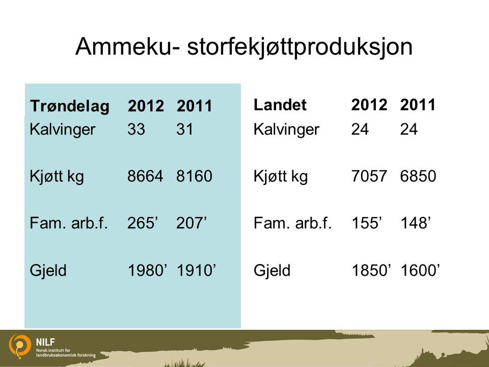 Ammeku- storfekjøttproduksjon Trøndelag 20122011 Kalvinger3331 Kjøtt kg 86648160 Fam.