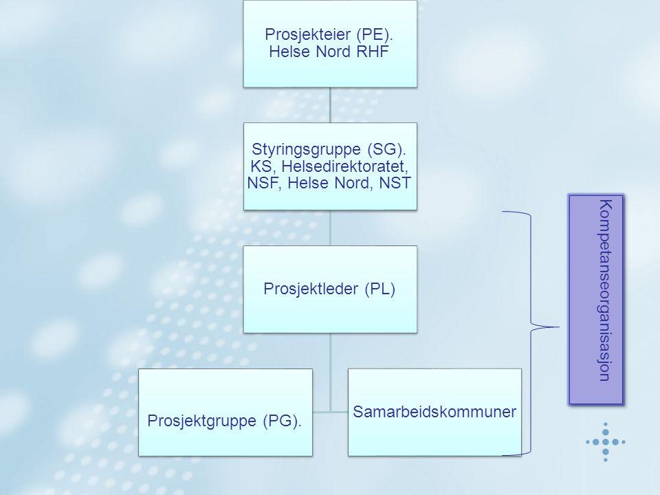 Prosjekteier (PE). Helse Nord RHF Styringsgruppe (SG).
