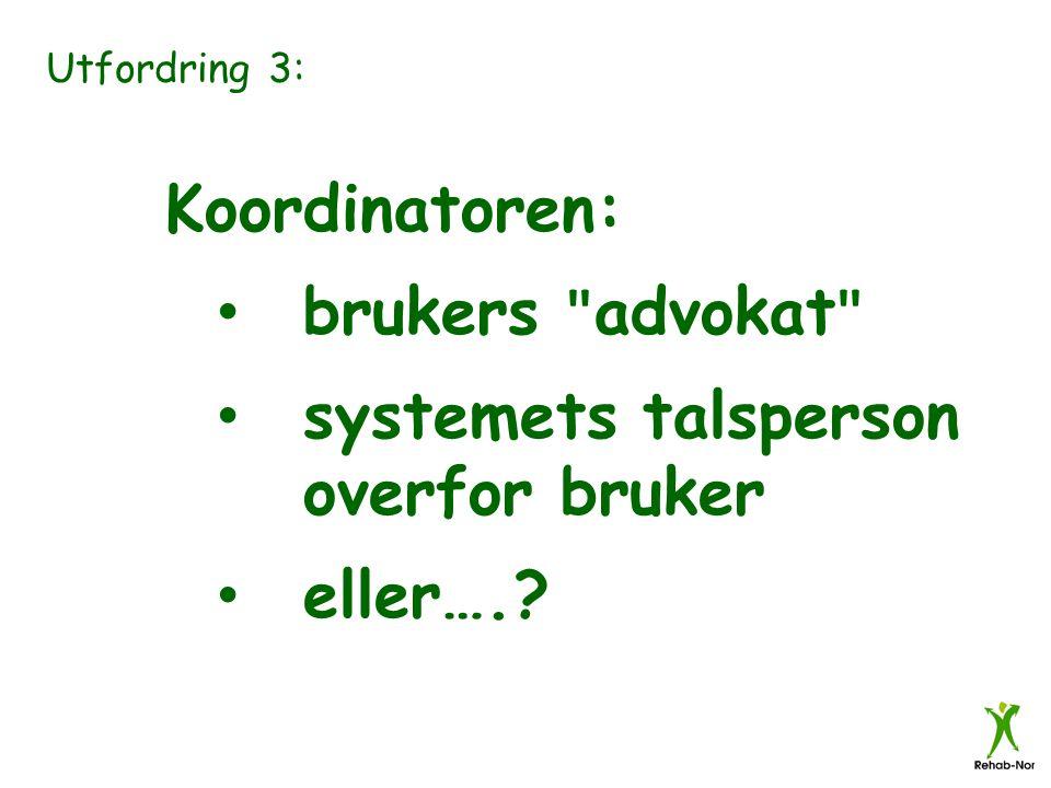 Utfordring 3: Koordinatoren: brukers