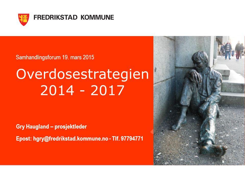 Overdosestrategien 2014 - 2017 Gry Haugland – prosjektleder Epost: hgry@fredrikstad.kommune.no - Tlf.