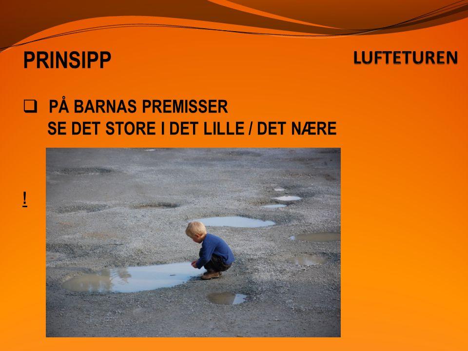 PRINSIPP  PÅ BARNAS PREMISSER SE DET STORE I DET LILLE / DET NÆRE !