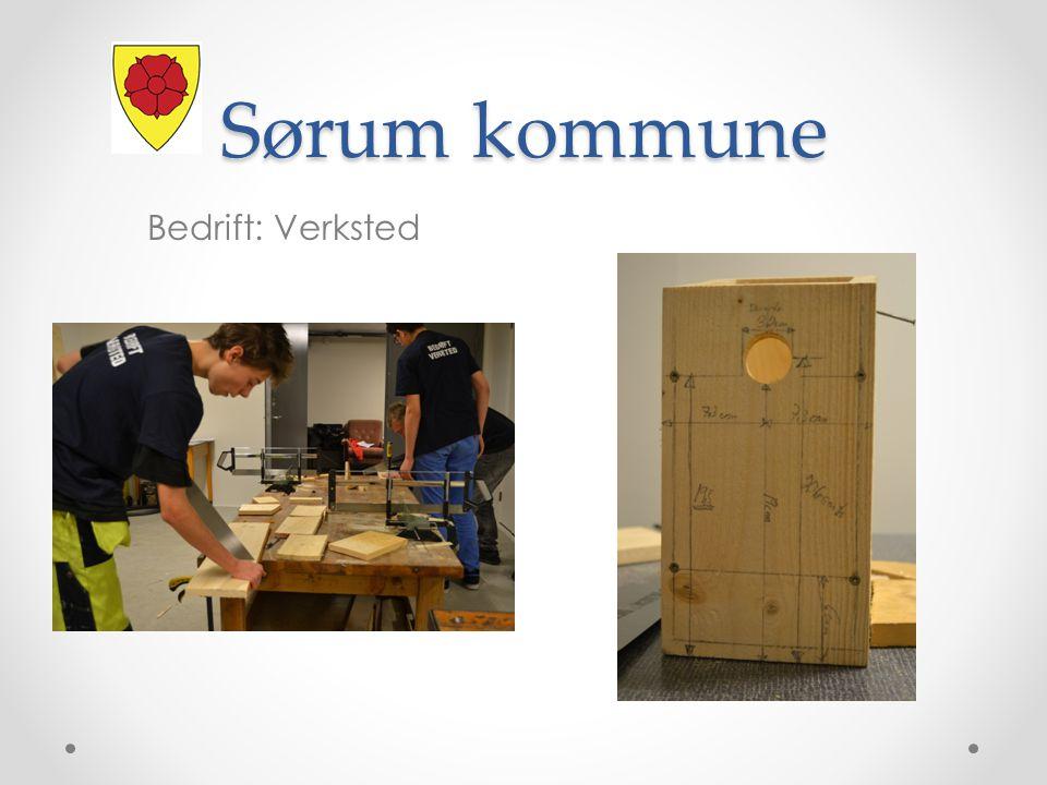 Sørum kommune Bedrift: Verksted