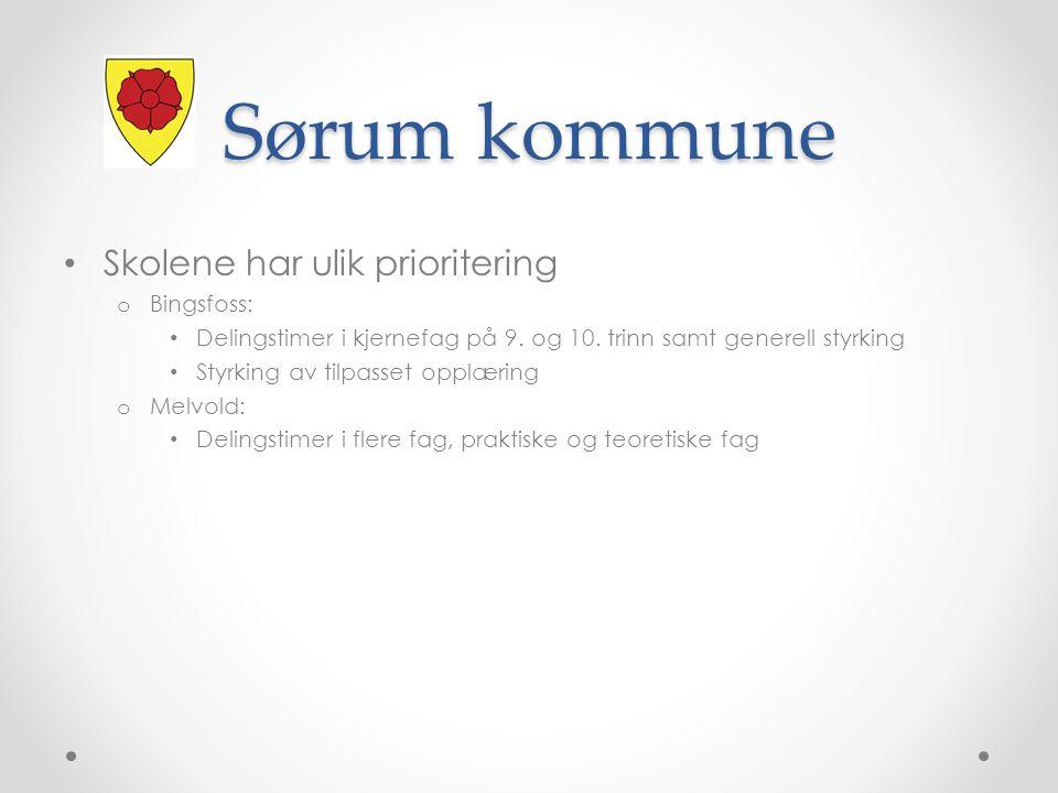 Sørum kommune Skolene har ulik prioritering o Bingsfoss: Delingstimer i kjernefag på 9.