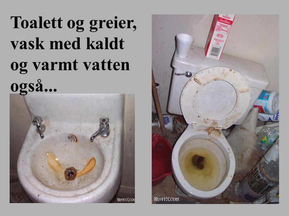 Toalett og greier, vask med kaldt og varmt vatten også...