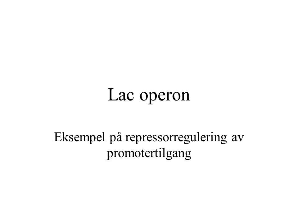 Lac operon Eksempel på repressorregulering av promotertilgang