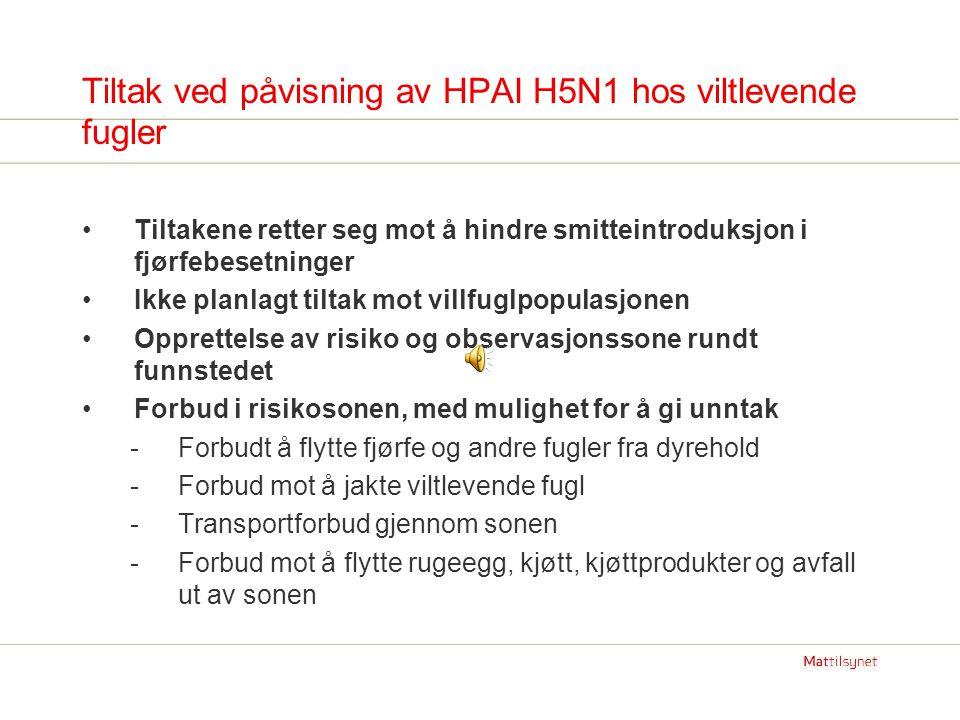 Tiltak ved påvisning av HPAI H5N1 hos viltlevende fugler Tiltakene retter seg mot å hindre smitteintroduksjon i fjørfebesetninger Ikke planlagt tiltak mot villfuglpopulasjonen Opprettelse av risiko og observasjonssone rundt funnstedet Forbud i risikosonen, med mulighet for å gi unntak -Forbudt å flytte fjørfe og andre fugler fra dyrehold -Forbud mot å jakte viltlevende fugl -Transportforbud gjennom sonen -Forbud mot å flytte rugeegg, kjøtt, kjøttprodukter og avfall ut av sonen