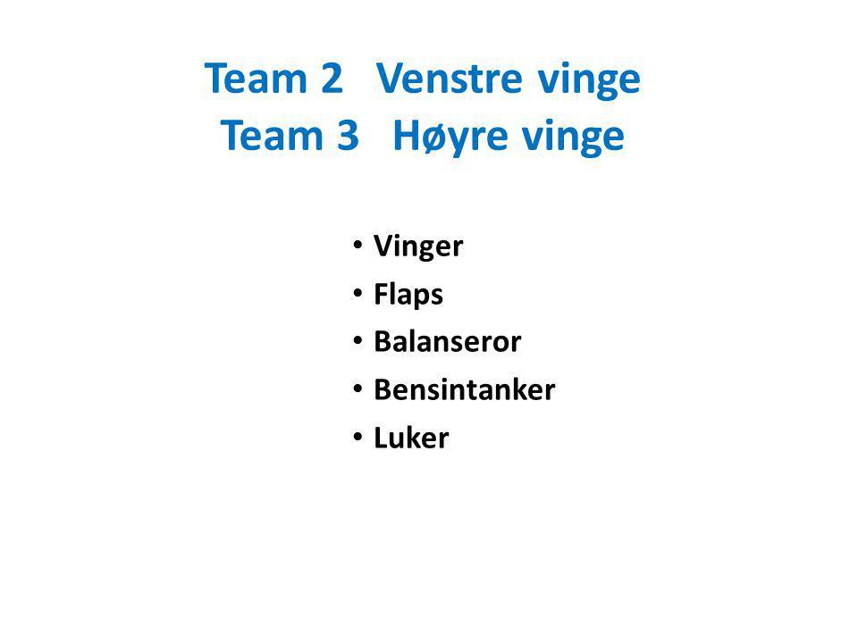 Team 2Venstre vinge Team 3Høyre vinge Vinger Flaps Balanseror Bensintanker Luker