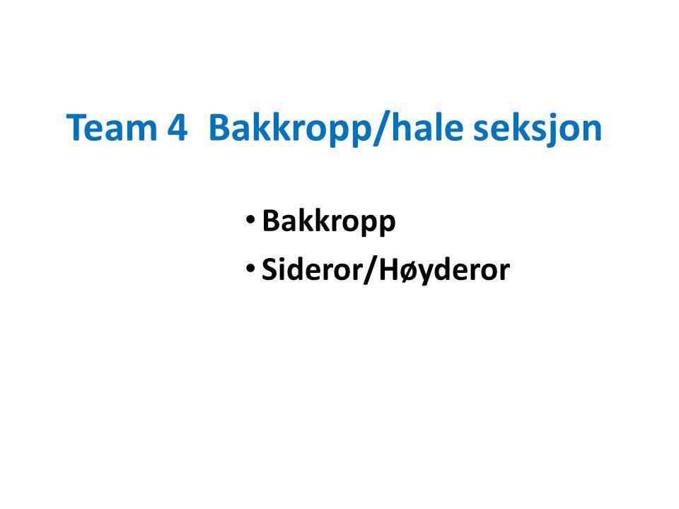 Team 4 Bakkropp/hale seksjon Bakkropp Sideror/Høyderor