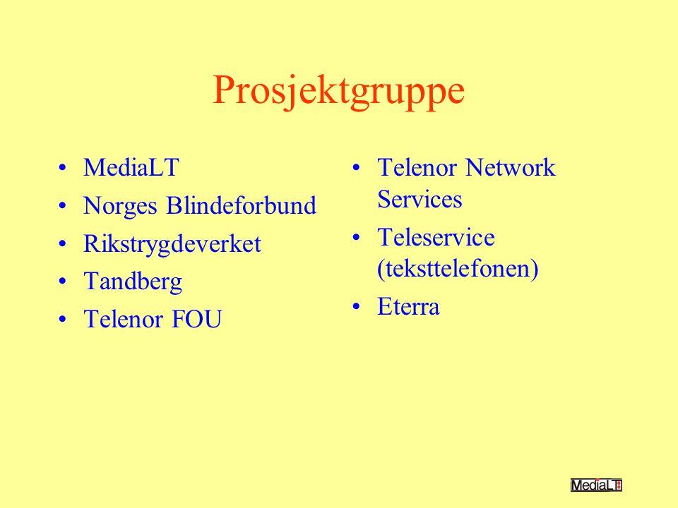 Prosjektgruppe MediaLT Norges Blindeforbund Rikstrygdeverket Tandberg Telenor FOU Telenor Network Services Teleservice (teksttelefonen) Eterra