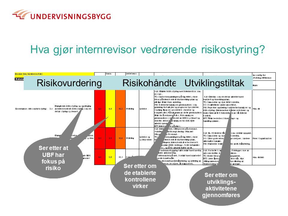 Hva gjør internrevisor vedrørende risikostyring.
