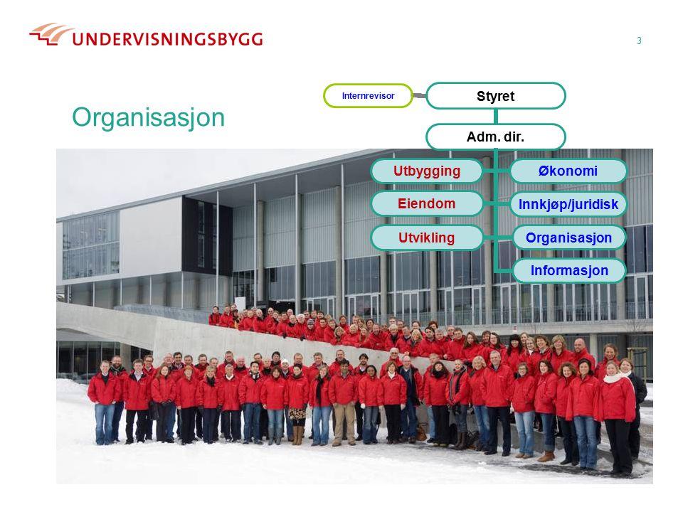 3 Styret Organisasjon