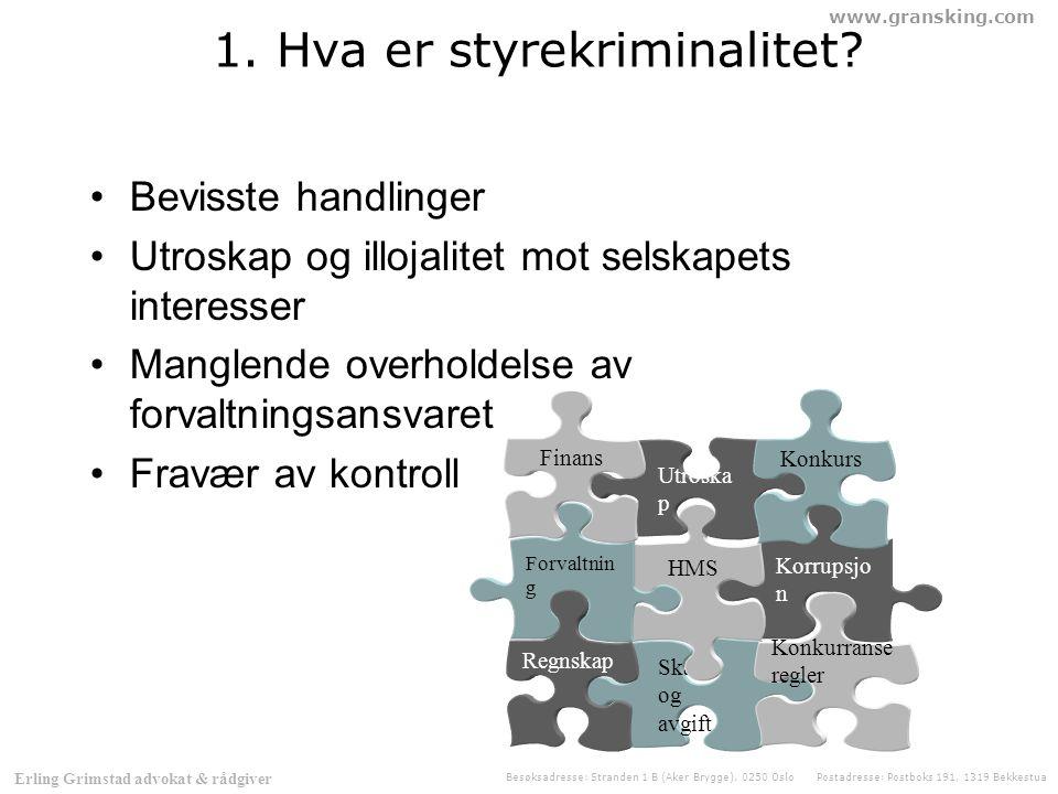 www.gransking.com Besøksadresse: Stranden 1 B (Aker Brygge), 0250 Oslo Postadresse: Postboks 191, 1319 Bekkestua Erling Grimstad advokat & rådgiver Hva er et selskap.