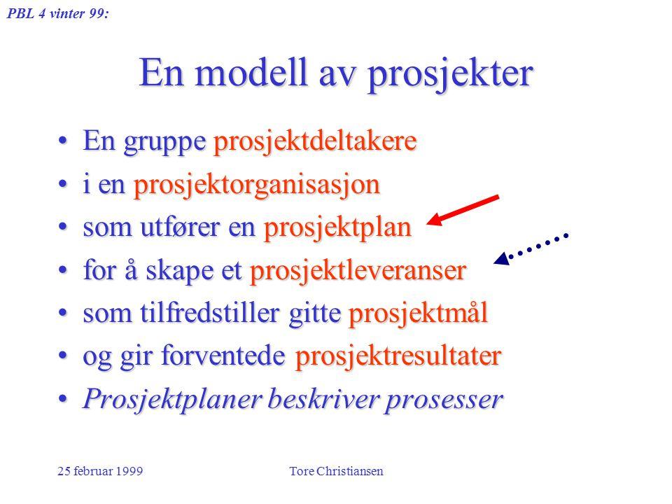PBL 4 vinter 99: 25 februar 1999Tore Christiansen En modell av prosjekter En gruppe prosjektdeltakereEn gruppe prosjektdeltakere i en prosjektorganisa