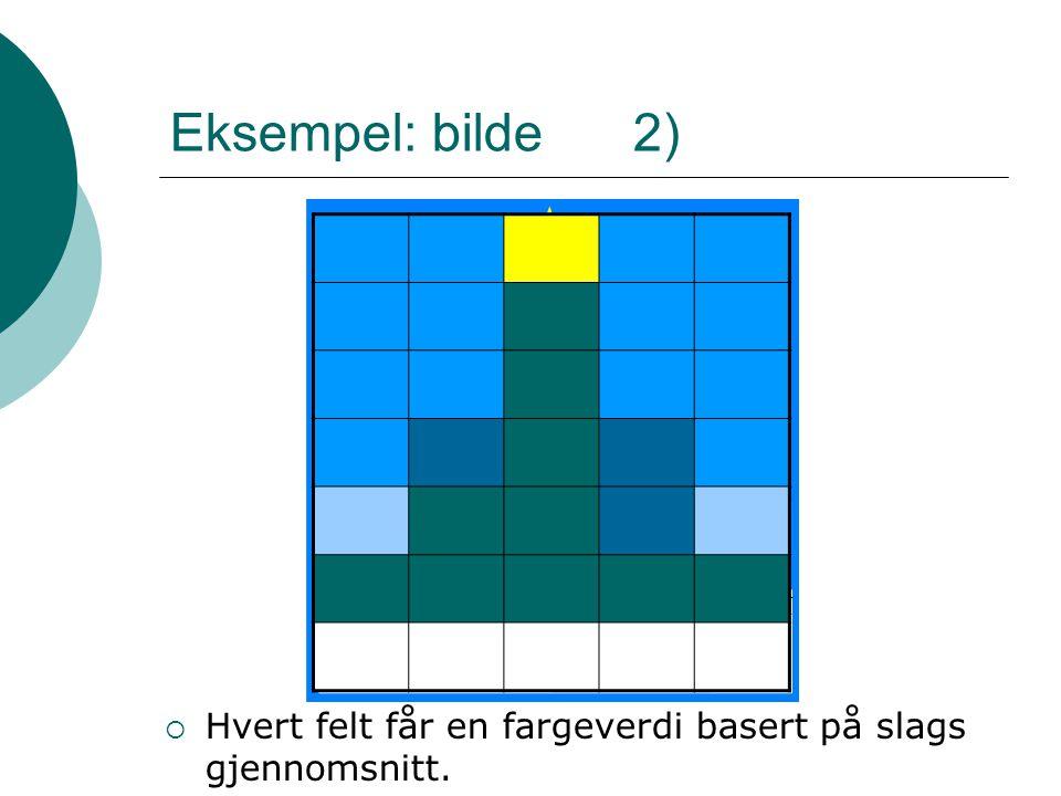 Eksempel: bilde 2)  Hvert felt får en fargeverdi basert på slags gjennomsnitt.