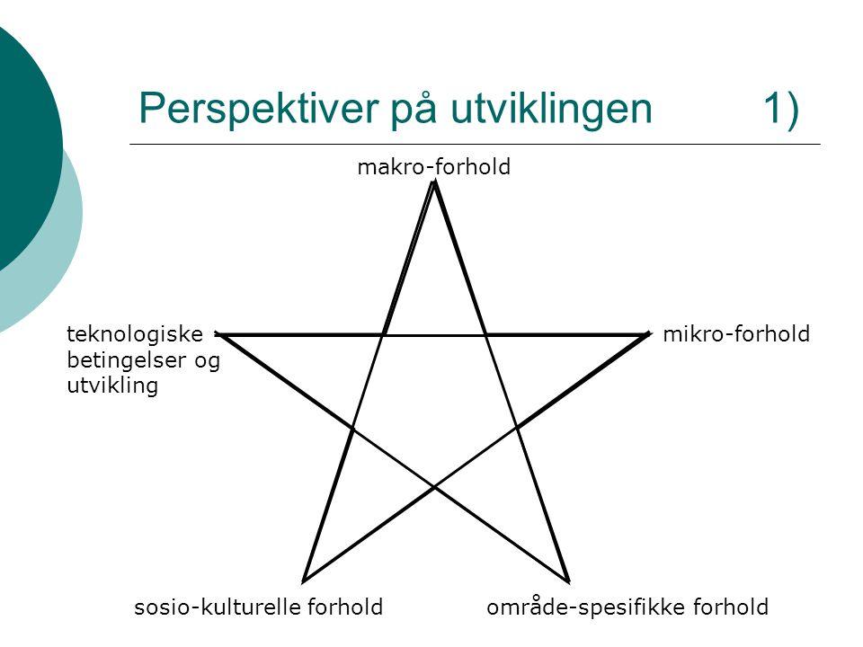 Perspektiver på utviklingen 1) makro-forhold mikro-forholdteknologiske betingelser og utvikling område-spesifikke forholdsosio-kulturelle forhold
