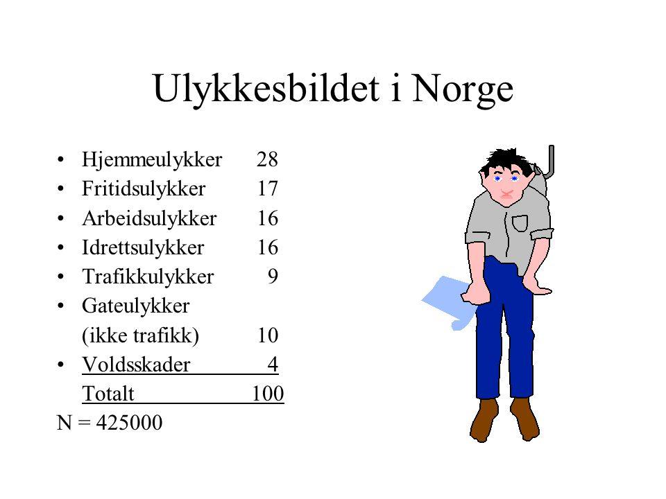 Ulykkesbildet i Norge Hjemmeulykker28 Fritidsulykker17 Arbeidsulykker16 Idrettsulykker16 Trafikkulykker 9 Gateulykker (ikke trafikk)10 Voldsskader 4 T