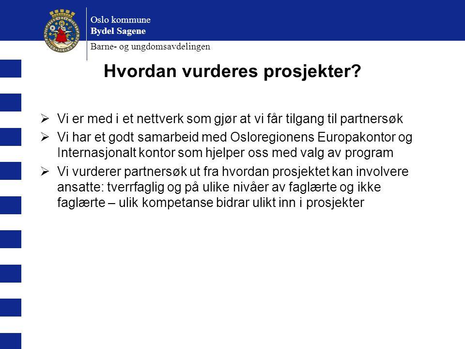 Oslo kommune Bydel Sagene Barne- og ungdomsavdelingen Hvordan vurderes prosjekter?  Vi er med i et nettverk som gjør at vi får tilgang til partnersøk
