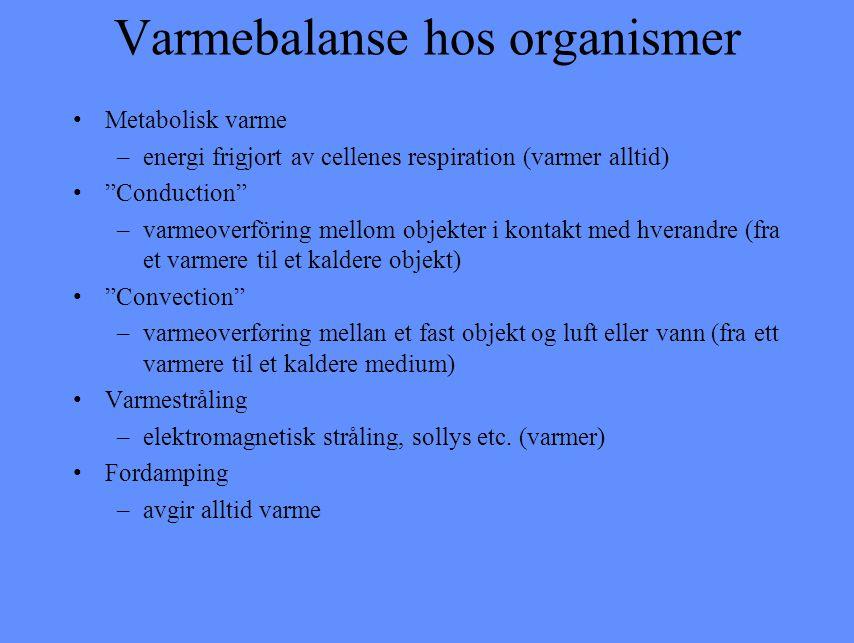 """Varmebalanse hos organismer Metabolisk varme –energi frigjort av cellenes respiration (varmer alltid) """"Conduction"""" –varmeoverföring mellom objekter i"""