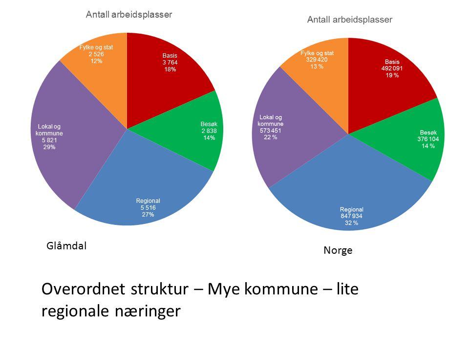 Norge Glåmdal Overordnet struktur – Mye kommune – lite regionale næringer