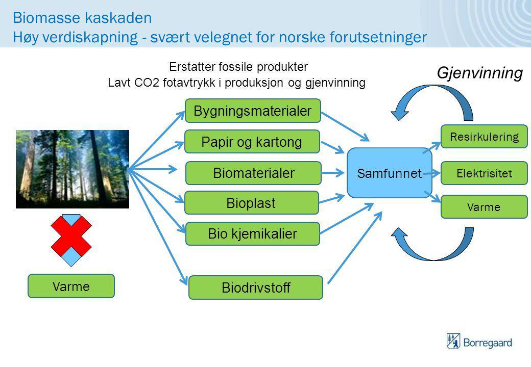 Biomasse kaskaden Høy verdiskapning - svært velegnet for norske forutsetninger Bygningsmaterialer Papir og kartong Biomaterialer Bioplast Bio kjemikalier Erstatter fossile produkter Lavt CO2 fotavtrykk i produksjon og gjenvinning Samfunnet Resirkulering Varme Elektrisitet Gjenvinning Biodrivstoff Varme