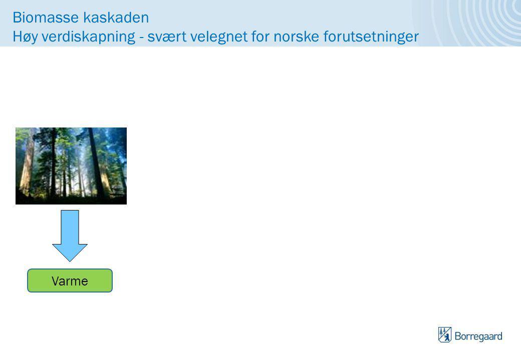 Biomasse kaskaden Høy verdiskapning - svært velegnet for norske forutsetninger Bygningsmaterialer Papir og kartong Biomaterialer Bioplast Bio kjemikalier Erstatter fossile produkter Lavt CO2 fotavtrykk i produksjon og gjenvinning Samfunnet Biodrivstoff Varme