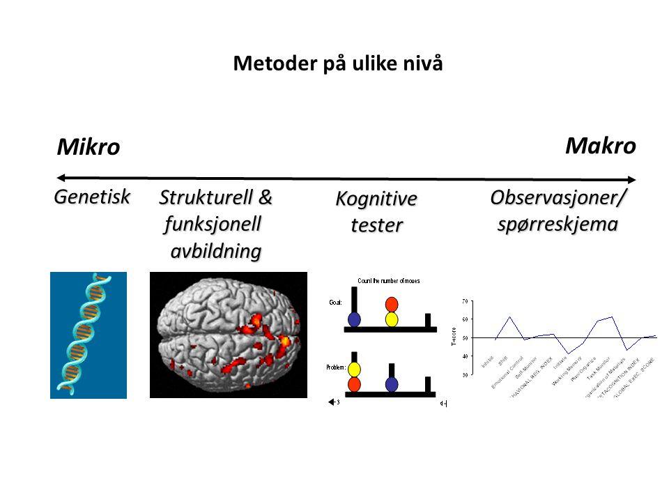 Metoder på ulike nivå Mikro Makro Kognitivetester Observasjoner/spørreskjema Strukturell & funksjonellavbildning Genetisk