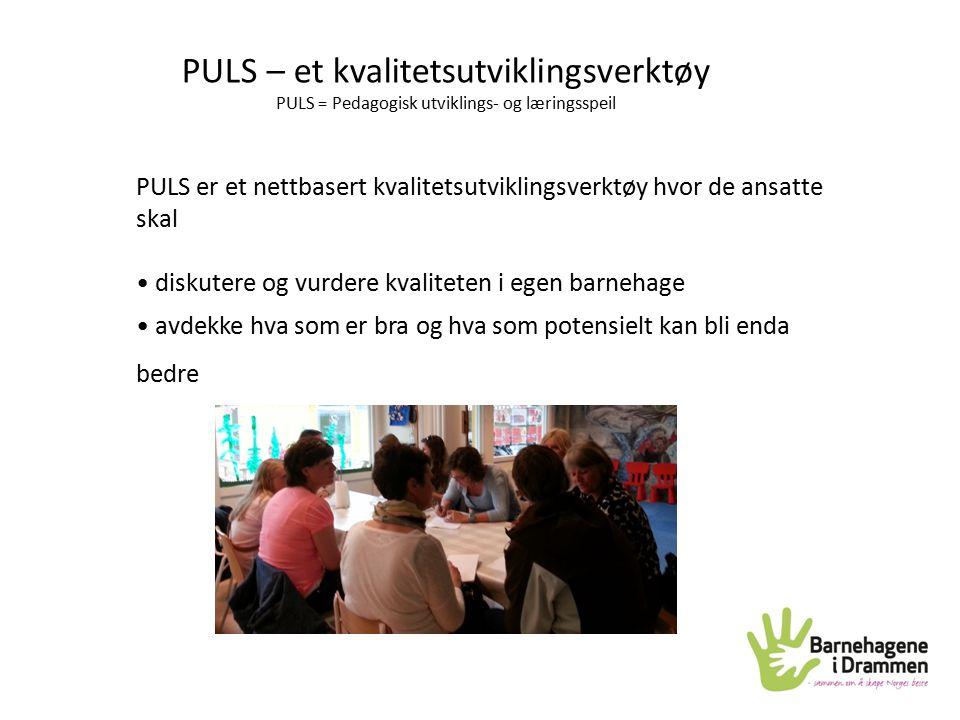 PULS – et kvalitetsutviklingsverktøy PULS = Pedagogisk utviklings- og læringsspeil PULS er et nettbasert kvalitetsutviklingsverktøy hvor de ansatte sk