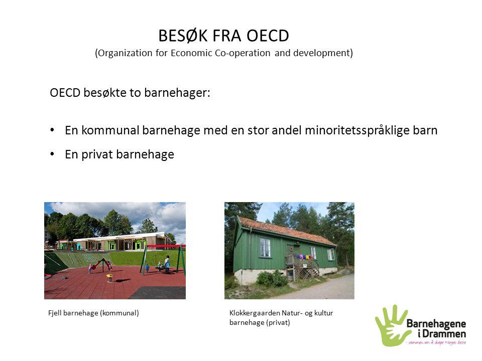 BESØK FRA OECD (Organization for Economic Co-operation and development) OECD besøkte to barnehager: En kommunal barnehage med en stor andel minoritets
