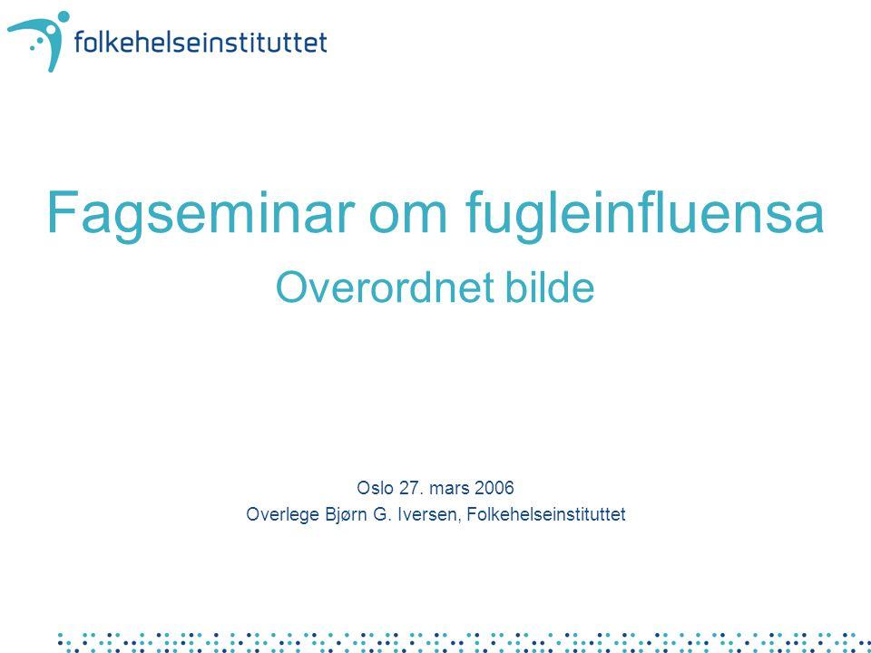 Fagseminar om fugleinfluensa Overordnet bilde Oslo 27. mars 2006 Overlege Bjørn G. Iversen, Folkehelseinstituttet