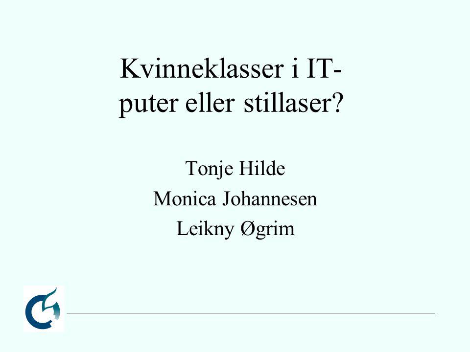 Kvinneklasser i IT- puter eller stillaser? Tonje Hilde Monica Johannesen Leikny Øgrim