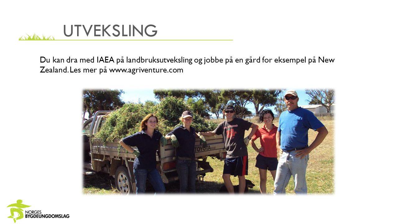 UTVEKSLING Du kan dra med IAEA på landbruksutveksling og jobbe på en gård for eksempel på New Zealand. Les mer på www.agriventure.com