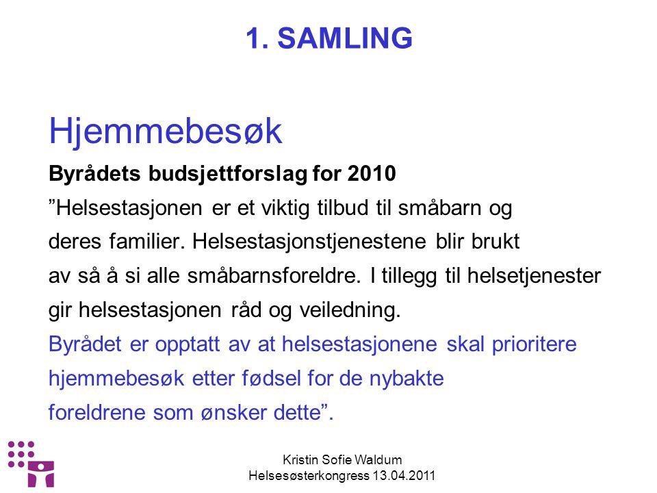 Kristin Sofie Waldum Helsesøsterkongress 13.04.2011 HJEMMEBESØK