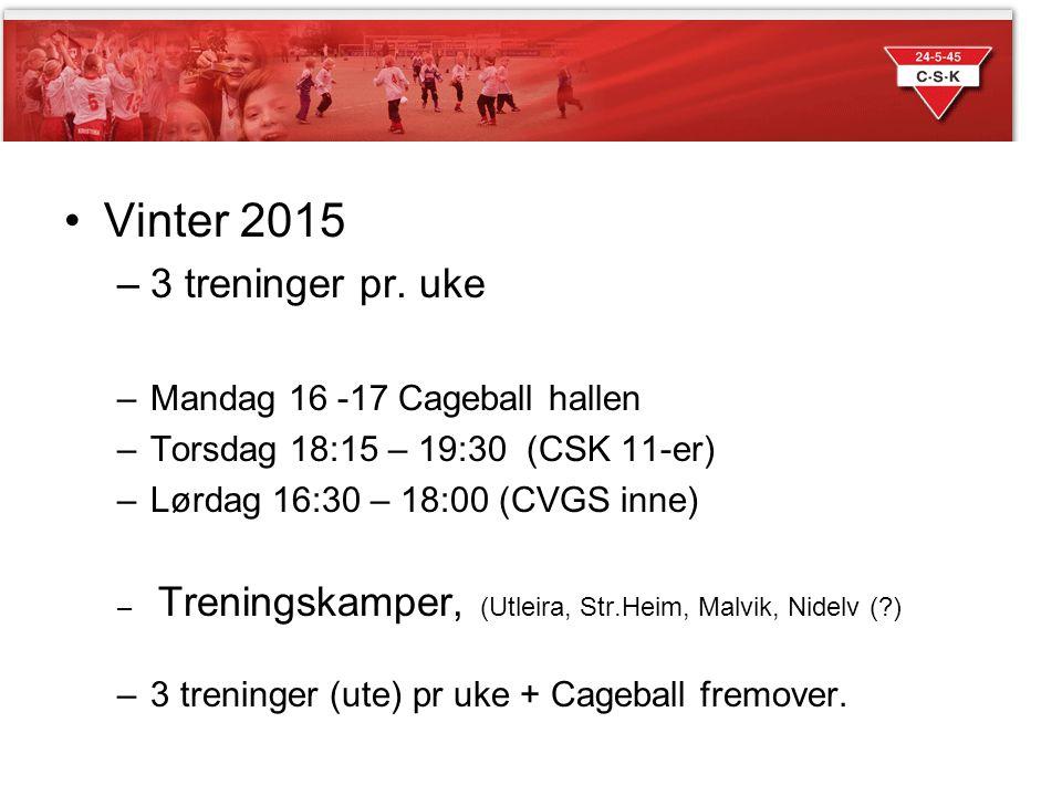 Sesongen 2014 Vinter 2015 –3 treninger pr. uke –Mandag 16 -17 Cageball hallen –Torsdag 18:15 – 19:30 (CSK 11-er) –Lørdag 16:30 – 18:00 (CVGS inne) – T