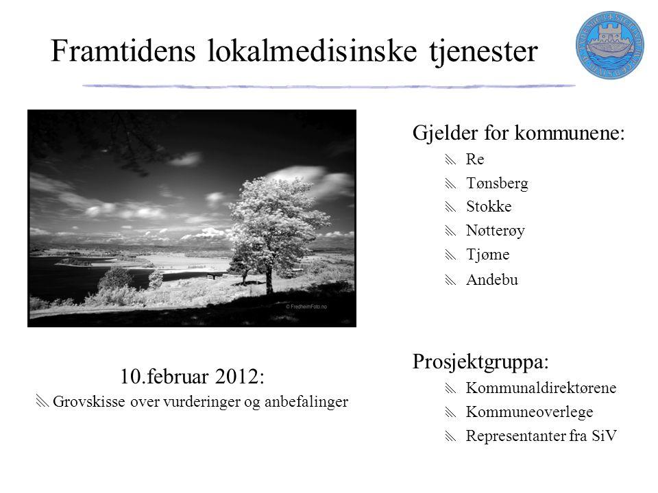 Framtidens lokalmedisinske tjenester Gjelder for kommunene:  Re  Tønsberg  Stokke  Nøtterøy  Tjøme  Andebu Prosjektgruppa:  Kommunaldirektørene