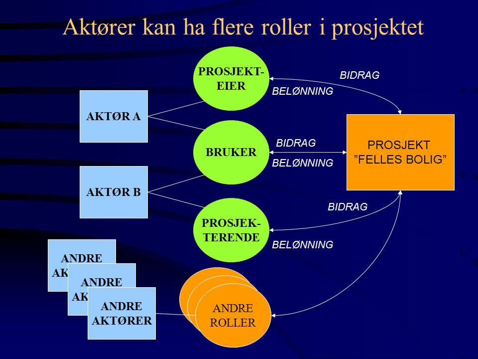 AKTØR A AKTØR B PROSJEKT- EIER BRUKER PROSJEK- TERENDE PROSJEKT FELLES BOLIG BIDRAG BELØNNING ANDRE AKTØRER ANDRE AKTØRER ANDRE AKTØRER ANDRE ROLLER ANDRE ROLLER ANDRE ROLLER Aktører kan ha flere roller i prosjektet