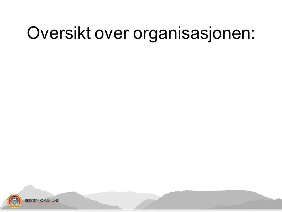 Oversikt over organisasjonen:
