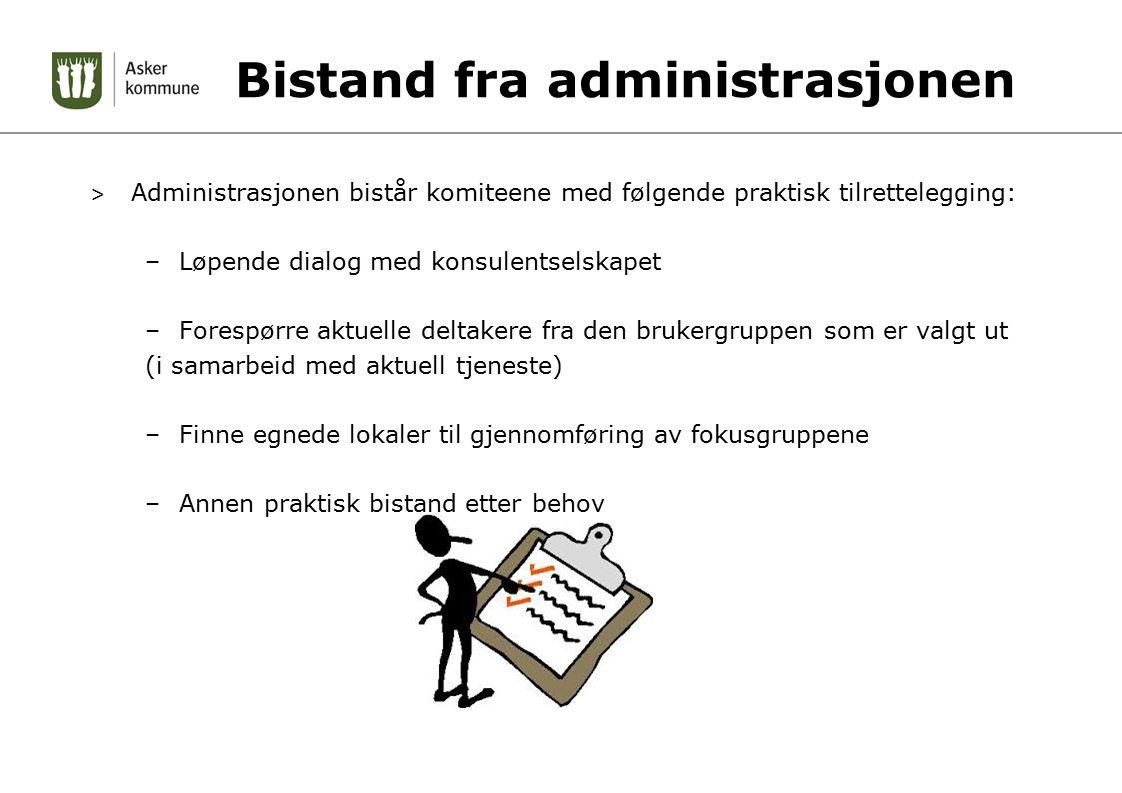 Bistand fra administrasjonen > Administrasjonen bistår komiteene med følgende praktisk tilrettelegging: –Løpende dialog med konsulentselskapet –Foresp