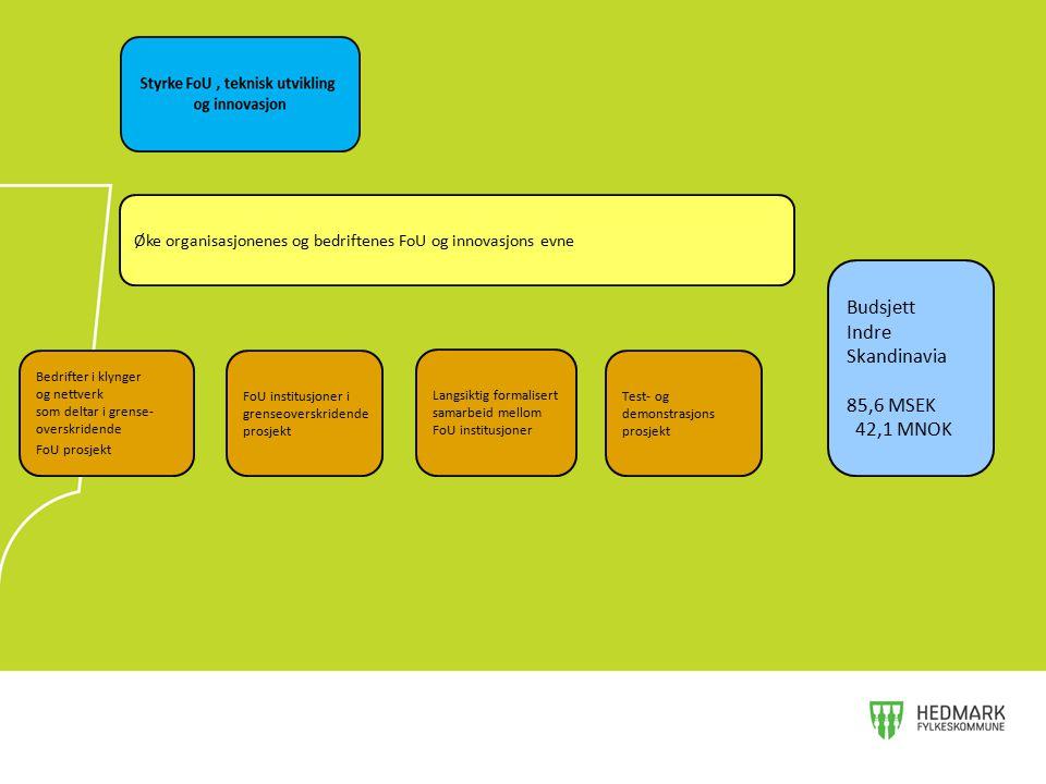 Øke organisasjonenes og bedriftenes FoU og innovasjons evne Bedrifter i klynger og nettverk som deltar i grense- overskridende FoU prosjekt FoU instit