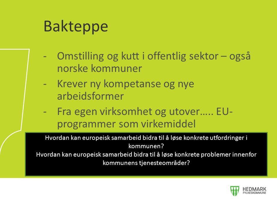 -Omstilling og kutt i offentlig sektor – også norske kommuner -Krever ny kompetanse og nye arbeidsformer -Fra egen virksomhet og utover….. EU- program