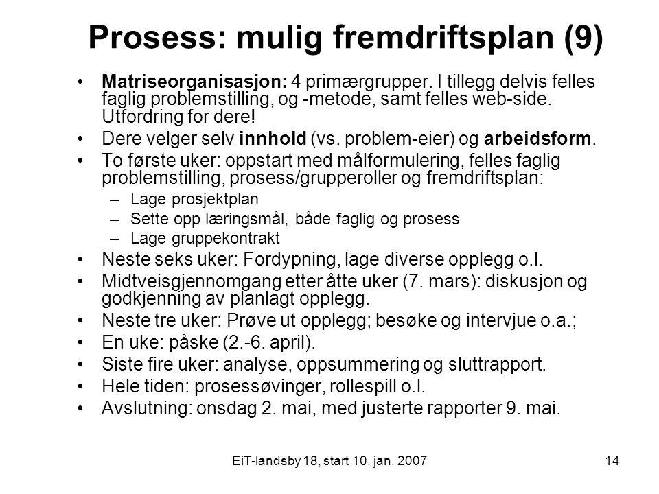 EiT-landsby 18, start 10. jan. 200714 Prosess: mulig fremdriftsplan (9) Matriseorganisasjon: 4 primærgrupper. I tillegg delvis felles faglig problemst